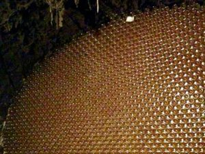 Champagne bottle wall